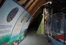 Exposition Corridors biologiques - Pro Natura Champ-Pittet (© Pro Natura Champ-Pittet)