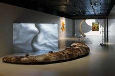 Entführungen – Kunst, Wissenschaft und die DNA des Steinbocks