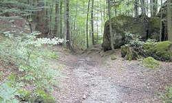 Hier trafen am 15. November 1315 die Habsburger auf die Schwyzer und es kam zu wilden Szenen: von der Schornen (Gemeinde Sattel) hinauf zur Schafstetten auf dem Hohlweg, der sich wohl kaum verändert hat. Bild Franz Steinegger