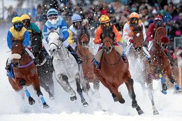 White Turf St. Moritz - International Horse Races on Snow since 1907 - 1