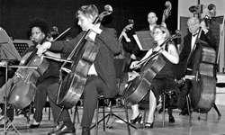In voller Konzentration: Die Cellisten des Orchesters «con brio». Bild Verena Blattmann