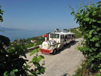 Train touristique Lavaux-Panoramic - 1