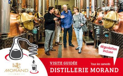 Visite guidée de la Distillerie Morand  - 1