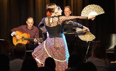 Grupo Hechizo Flamenco - Contrastes - Liebe und Schmerz