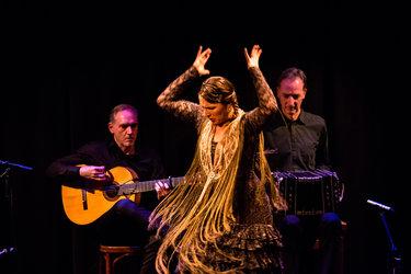 Grupo Hechizo Flamenco (ESP): Contrastes