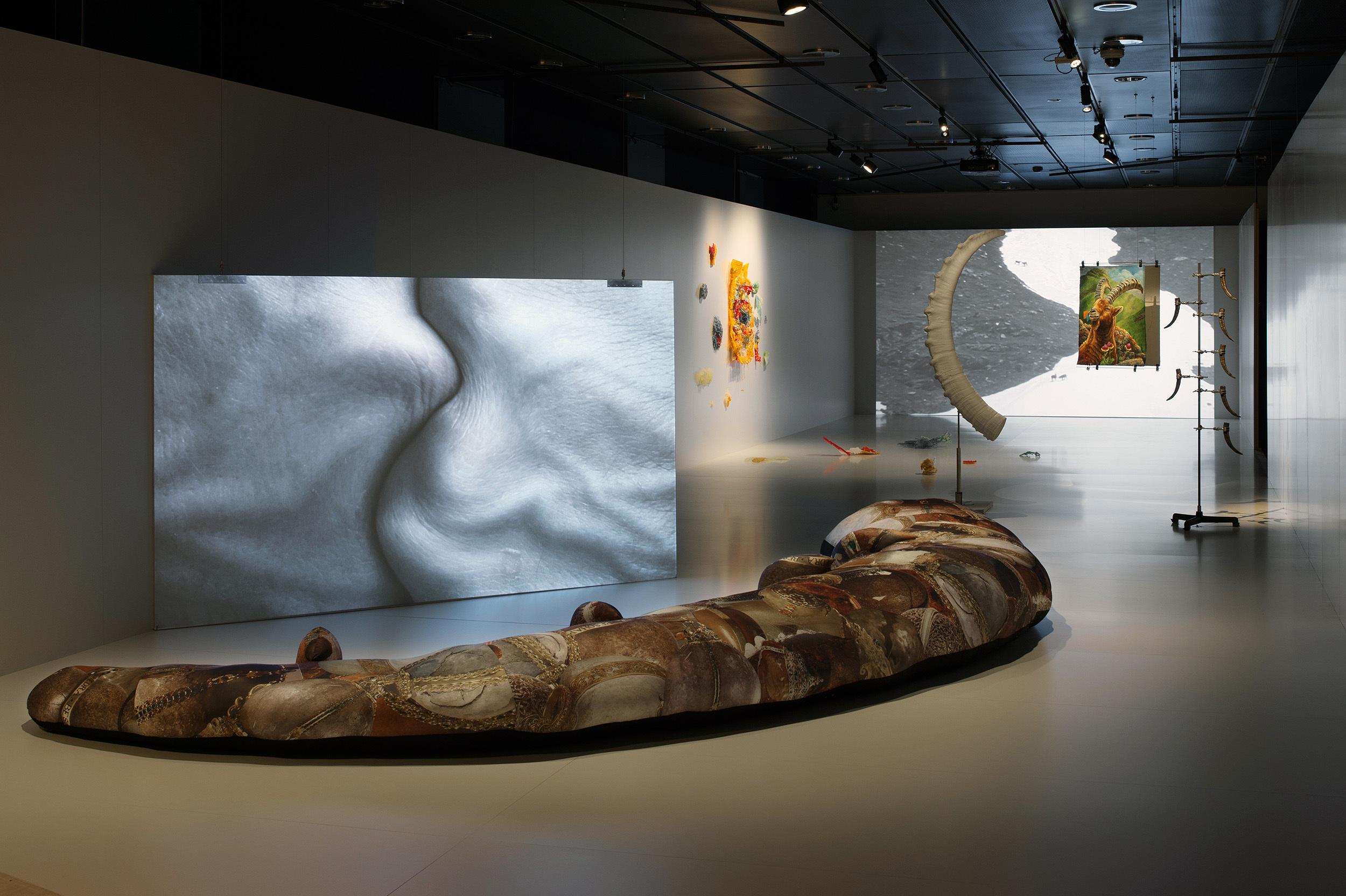 Entführungen - Kunst, Wissenschaft und die DNA des Steinbocks