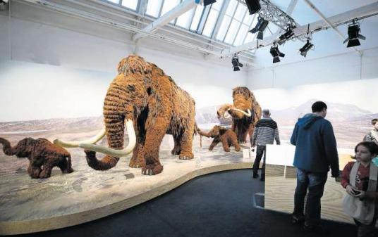 Die Mammut-Ausstellung war besonders erfolgreich. (Bild Stefan Kaiser)