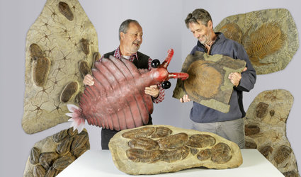 Trilobiten & Seeskorpione – Spezialausstellung Sauriermuseum