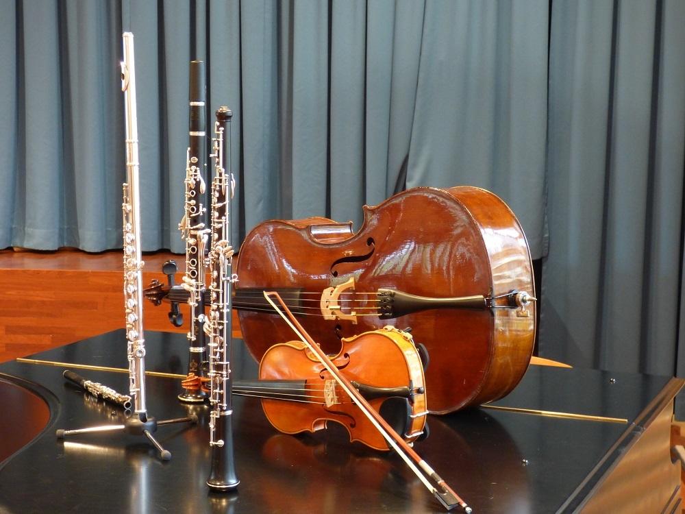Konzert des Salonorchesters St. Gallen