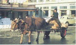 Das hat es 1968 noch gegeben: Die unvergessliche Albertine Schönbächler mit ihrem Kuh-Fuhrwerk vor dem Landhaus,der «Ranch». Bild Franz Kälin
