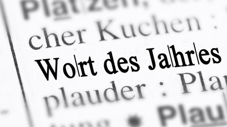Das Liechtensteiner Wort des Jahres wird seit 2002 von einer Sprachjury gekürt.