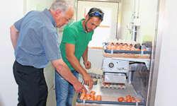 Bauer Michael Reichmuth erklärt Johann Schneider-Ammann die Eierproduktionsanlage des Biohofs Fluofeld. Bild Christoph Clavadetscher