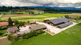 Buuchihof: Gästebewirtung & Events