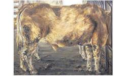 Das Bild «Der kopflose Ochse» der Schwyzerin Adriana Hartmann sorgte beim Kunstankaufsgremium für stundenlange Diskussionen. Bild Paul A. Good