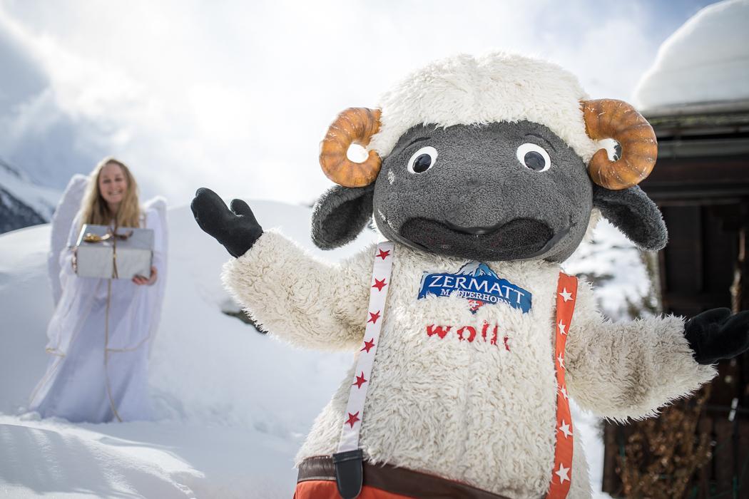Weihnachten mit Wolli