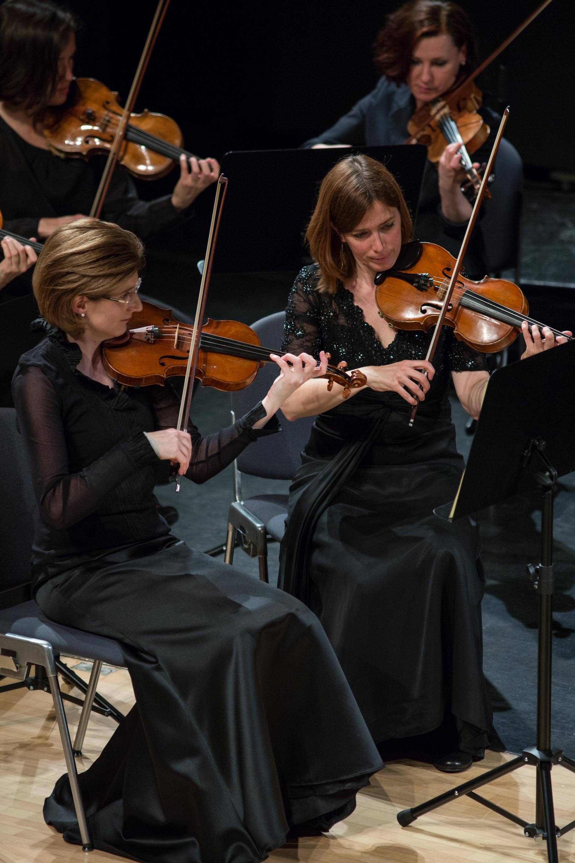 Zuger Sinfonietta: Lunchkonzert Sommer