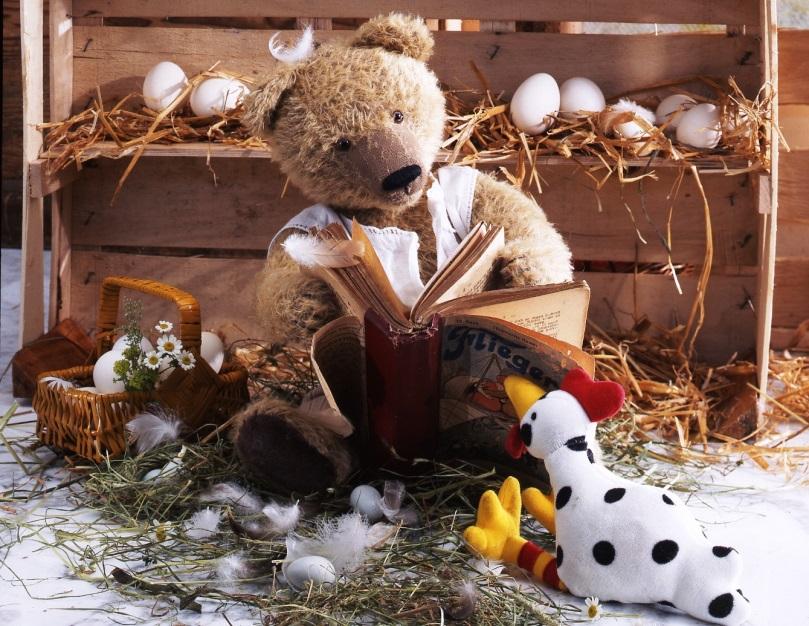 Der Appenzeller Bär macht Karriere