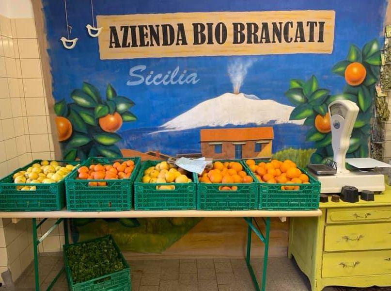 Bio Märit - Produkte aus Sizilien