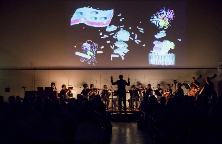 Serie Surprise - Lab Concerto