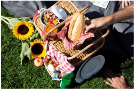 Picknick in der Fondation Beyeler