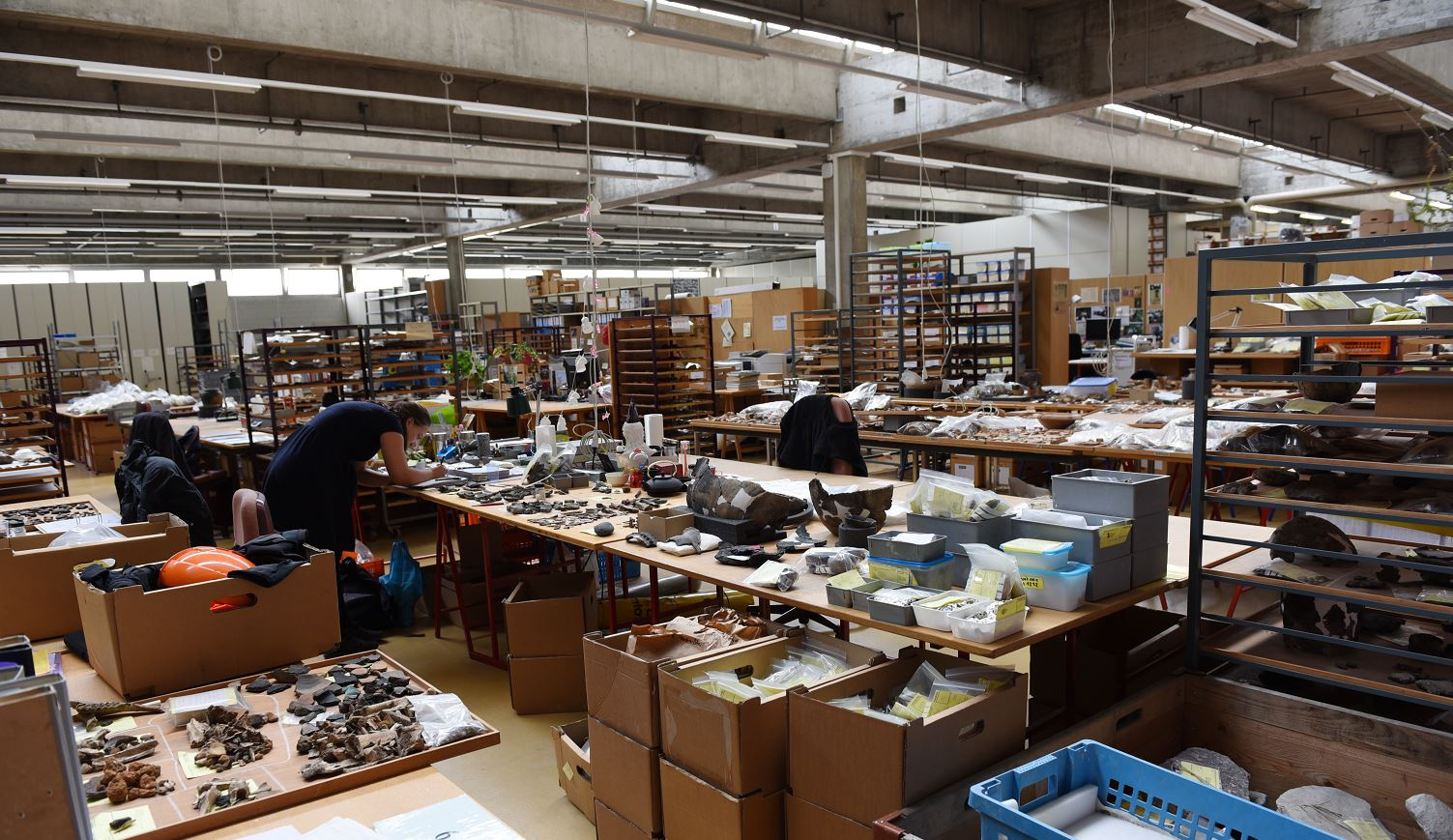 Offene Arbeitshalle der Archäologie und Denkmalpflege