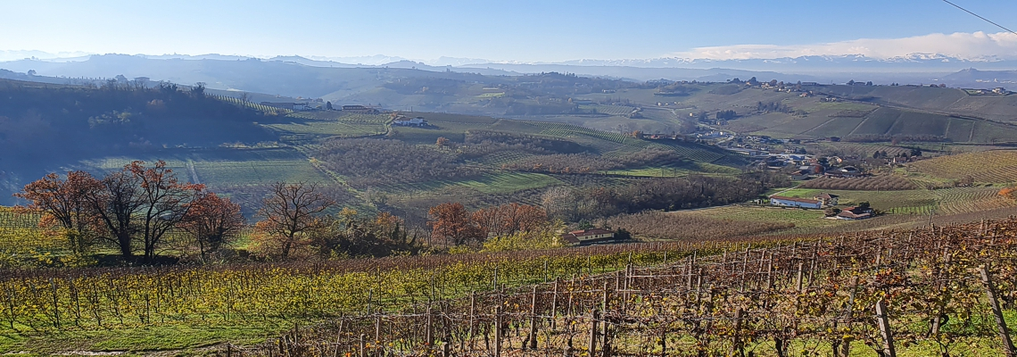 Piemont Festival 21 - Wein und Genussevent