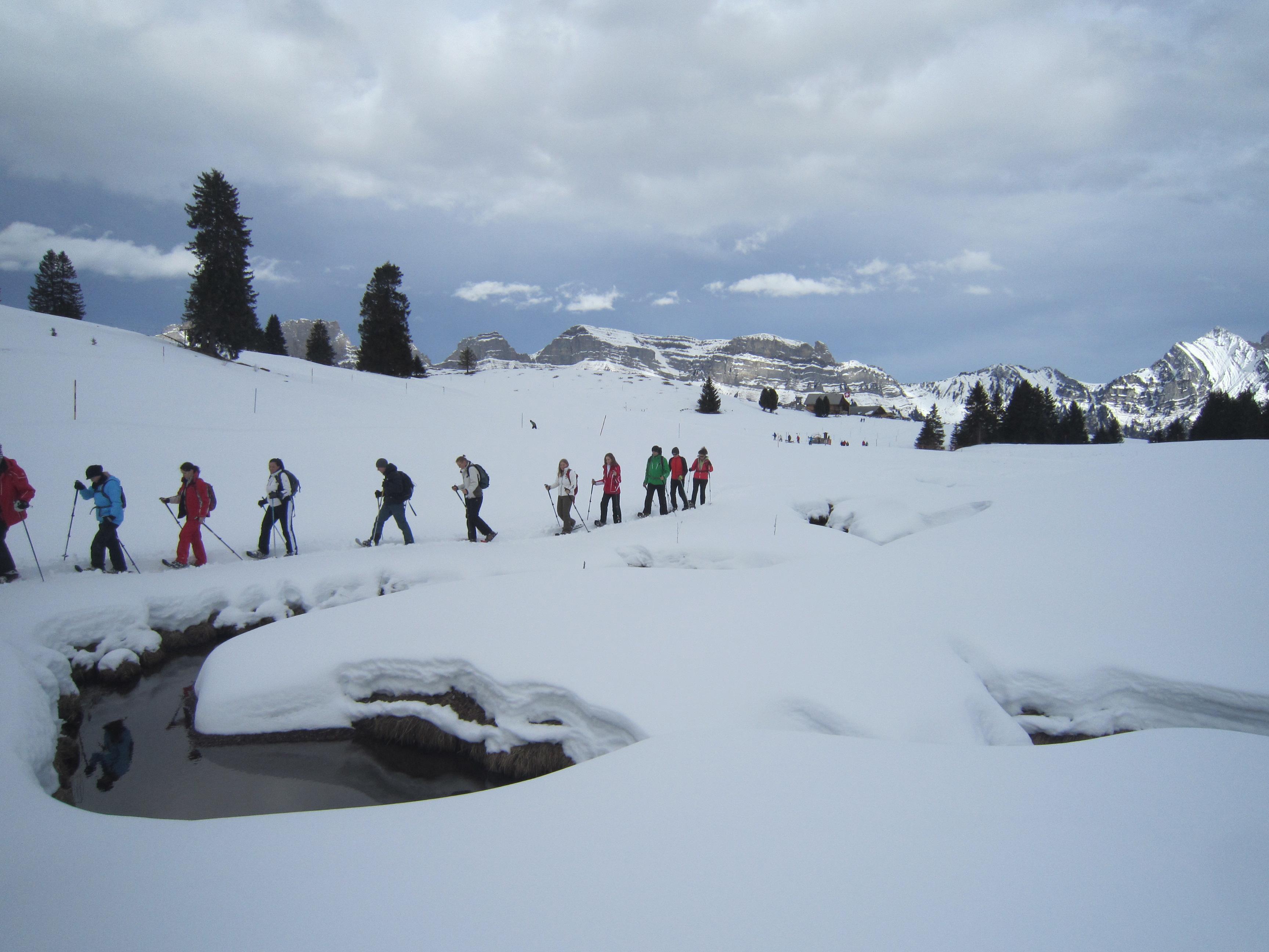 Schneeschuhwanderung Wildtier-Erlebnis